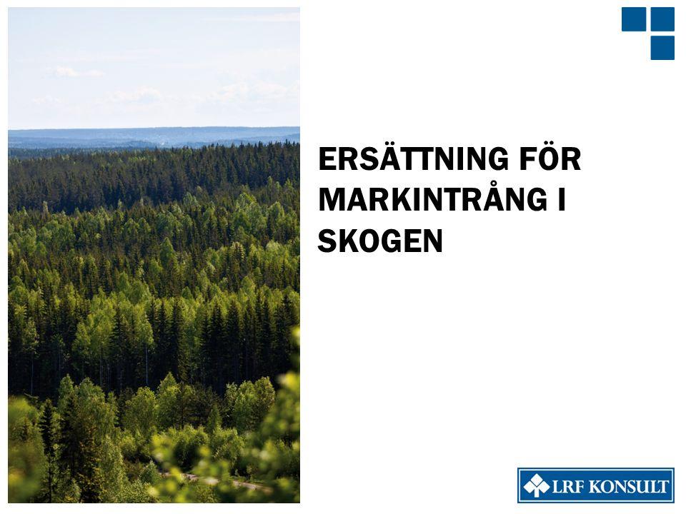 ERSÄTTNING FÖR MARKINTRÅNG I SKOGEN