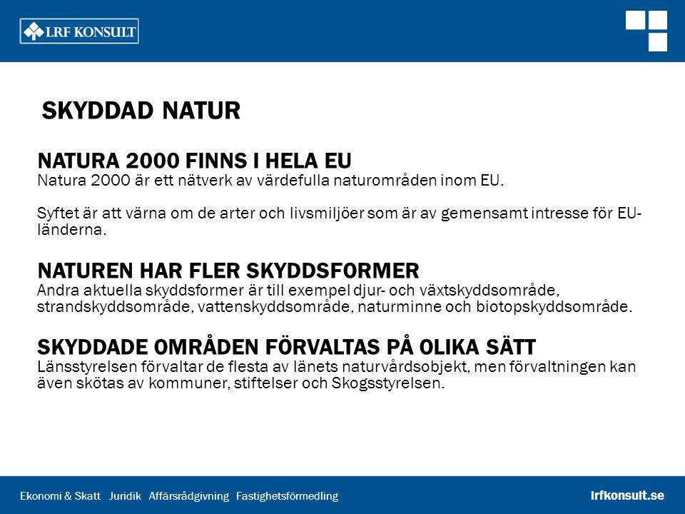 Ekonomi & Skatt Juridik Affärsrådgivning Fastighetsförmedling lrfkonsult.se SKYDDAD NATUR NATURA 2000 FINNS I HELA EU Natura 2000 är ett nätverk av vä