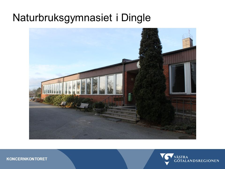 Naturbruksgymnasiet i Dingle KONCERNKONTORET