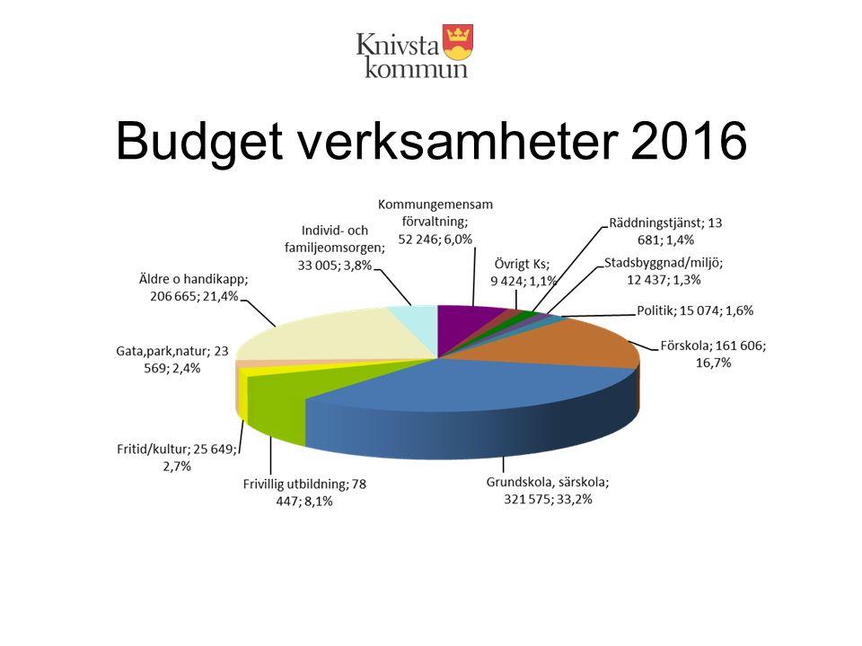 Budget verksamheter 2016
