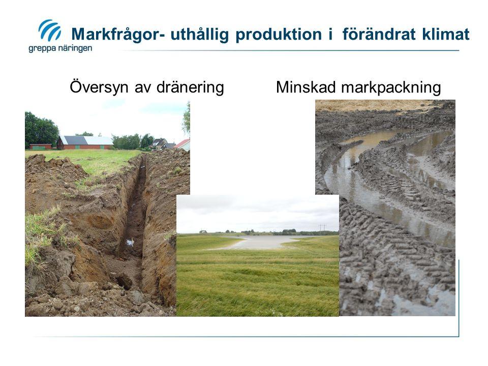 Markfrågor- uthållig produktion i förändrat klimat Översyn av dränering Minskad markpackning