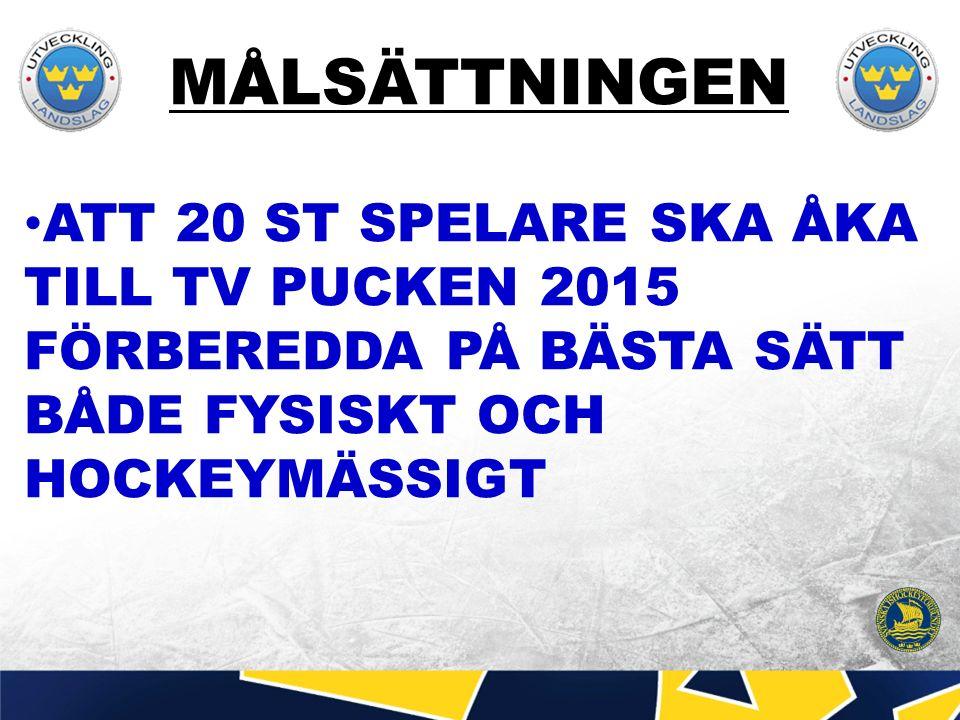 MÅLSÄTTNINGEN ATT 20 ST SPELARE SKA ÅKA TILL TV PUCKEN 2015 FÖRBEREDDA PÅ BÄSTA SÄTT BÅDE FYSISKT OCH HOCKEYMÄSSIGT
