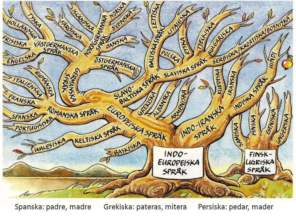 Spanska: padre, madreGrekiska: pateras, mitera Persiska: pedar, mader