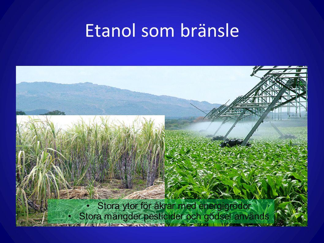 Etanol som bränsle Stora ytor för åkrar med energigrödor Stora mängder pesticider och gödsel används