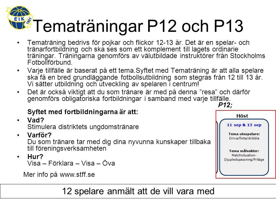 Tematräningar P12 och P13 Tematräning bedrivs för pojkar och flickor 12-13 år. Det är en spelar- och tränarfortbildning och ska ses som ett komplement