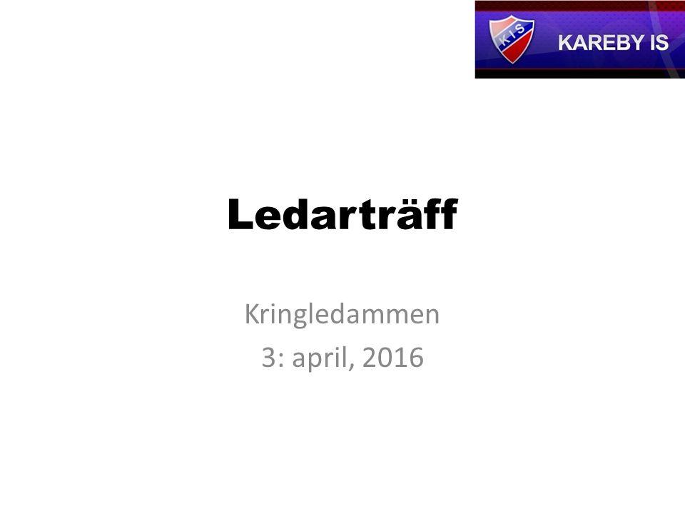 Ledarträff Kringledammen 3: april, 2016
