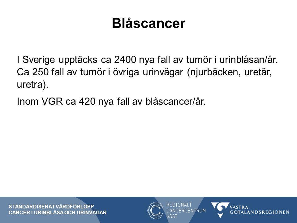 Blåscancer I Sverige upptäcks ca 2400 nya fall av tumör i urinblåsan/år.