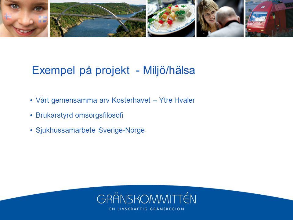 Exempel på projekt - Miljö/hälsa Vårt gemensamma arv Kosterhavet – Ytre Hvaler Brukarstyrd omsorgsfilosofi Sjukhussamarbete Sverige-Norge