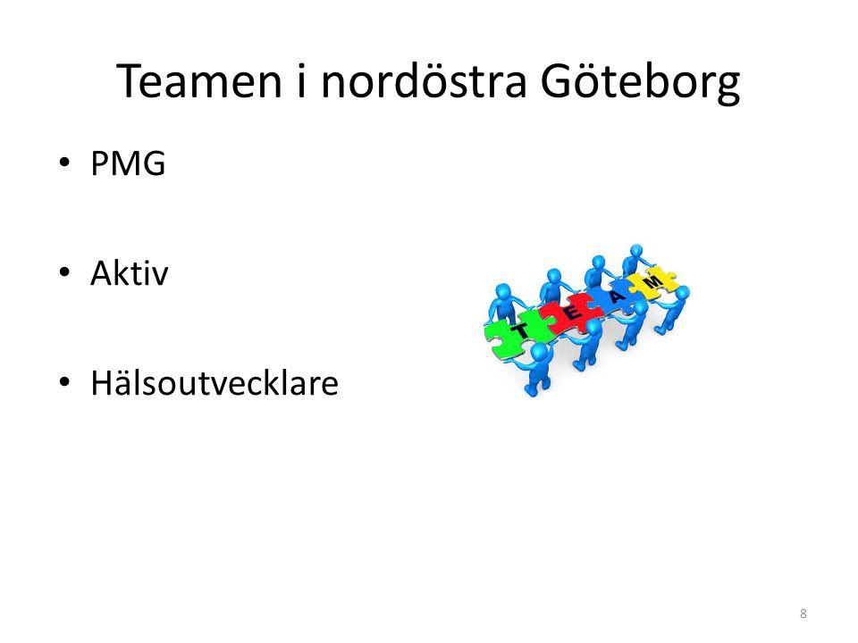 Teamen i nordöstra Göteborg 8 PMG Aktiv Hälsoutvecklare