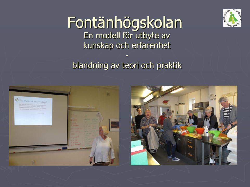 Fontänhögskolan En modell för utbyte av kunskap och erfarenhet - blandning av teori och praktik