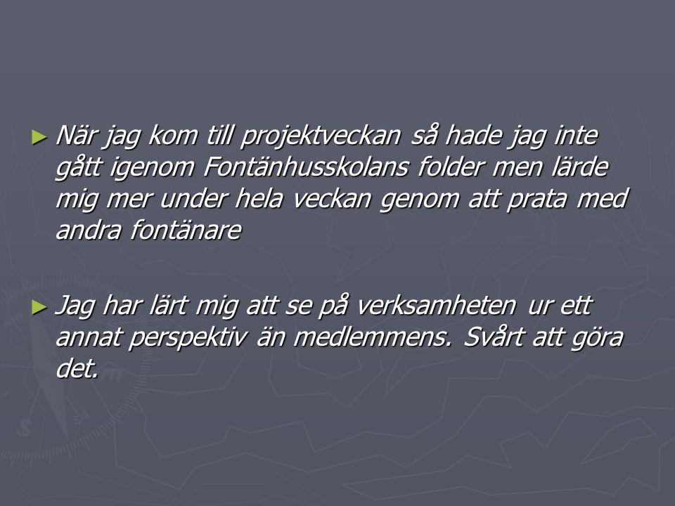 ► När jag kom till projektveckan så hade jag inte gått igenom Fontänhusskolans folder men lärde mig mer under hela veckan genom att prata med andra fontänare ► Jag har lärt mig att se på verksamheten ur ett annat perspektiv än medlemmens.