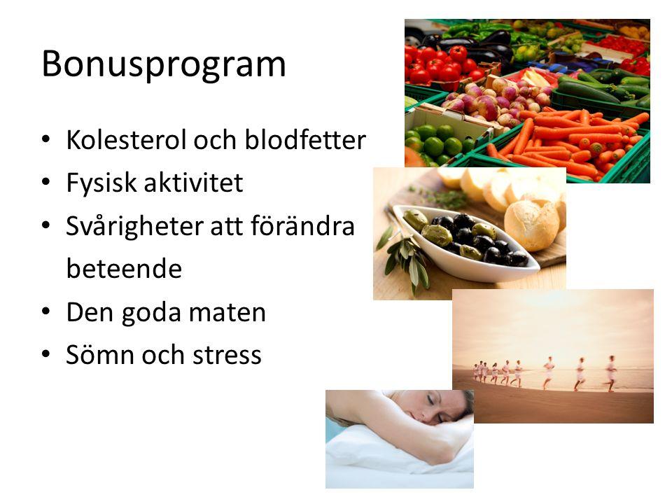 Bonusprogram Kolesterol och blodfetter Fysisk aktivitet Svårigheter att förändra beteende Den goda maten Sömn och stress