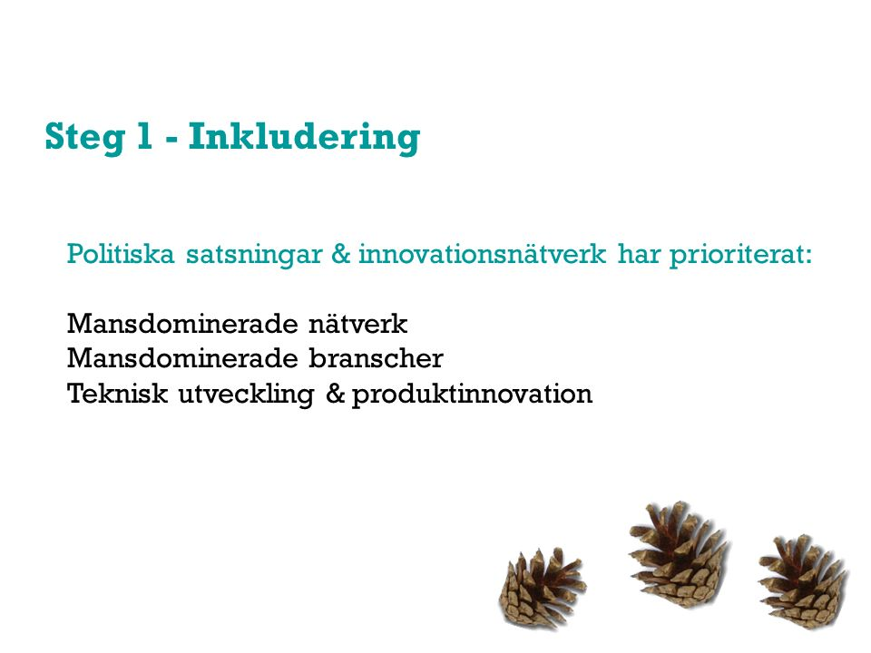 Steg 1 - Inkludering Politiska satsningar & innovationsnätverk har prioriterat: Mansdominerade nätverk Mansdominerade branscher Teknisk utveckling & produktinnovation