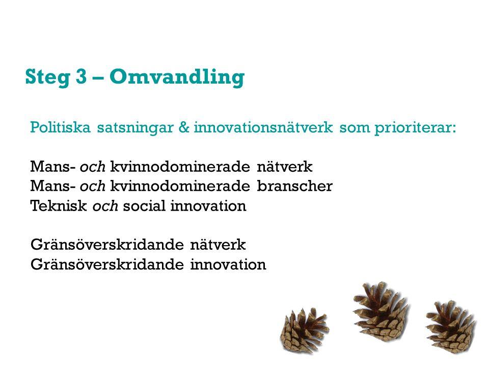 Steg 3 – Omvandling Politiska satsningar & innovationsnätverk som prioriterar: Mans- och kvinnodominerade nätverk Mans- och kvinnodominerade branscher Teknisk och social innovation Gränsöverskridande nätverk Gränsöverskridande innovation