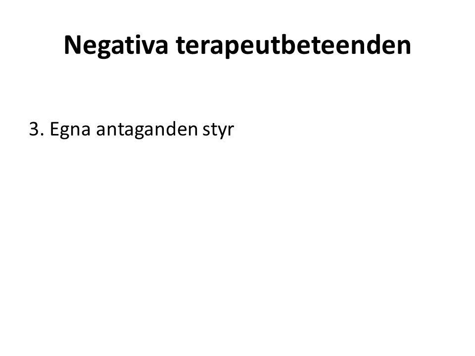 Negativa terapeutbeteenden 3. Egna antaganden styr