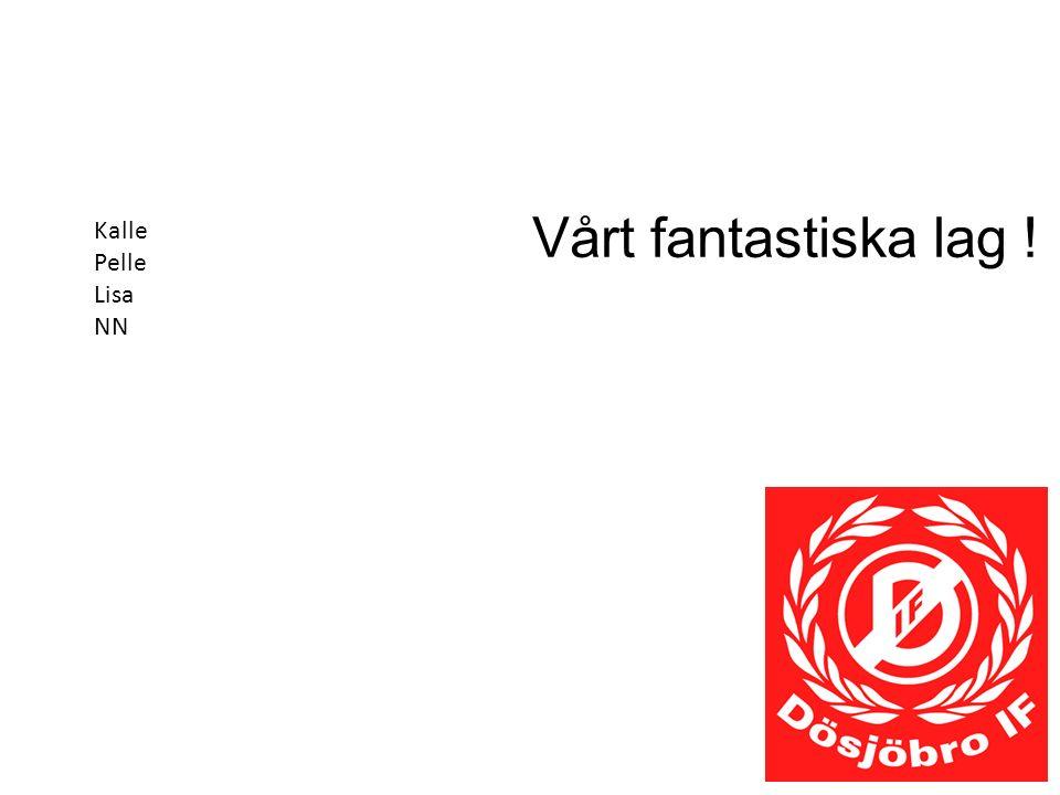 Vårt fantastiska lag ! Kalle Pelle Lisa NN