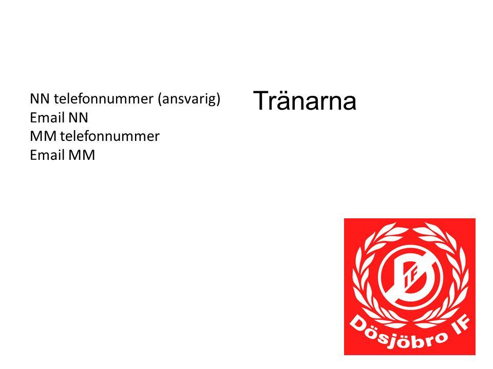DIF och Röda tråden Informera om Röda tråden Referera till relevanta delar Vad händer i klubben?