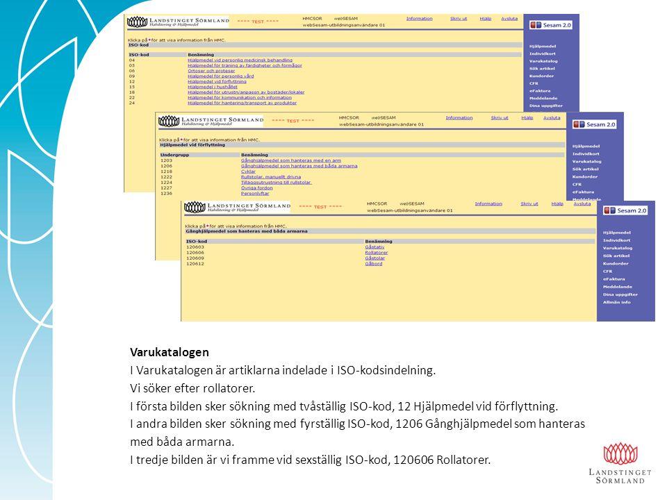 Varukatalogen I Varukatalogen är artiklarna indelade i ISO-kodsindelning.