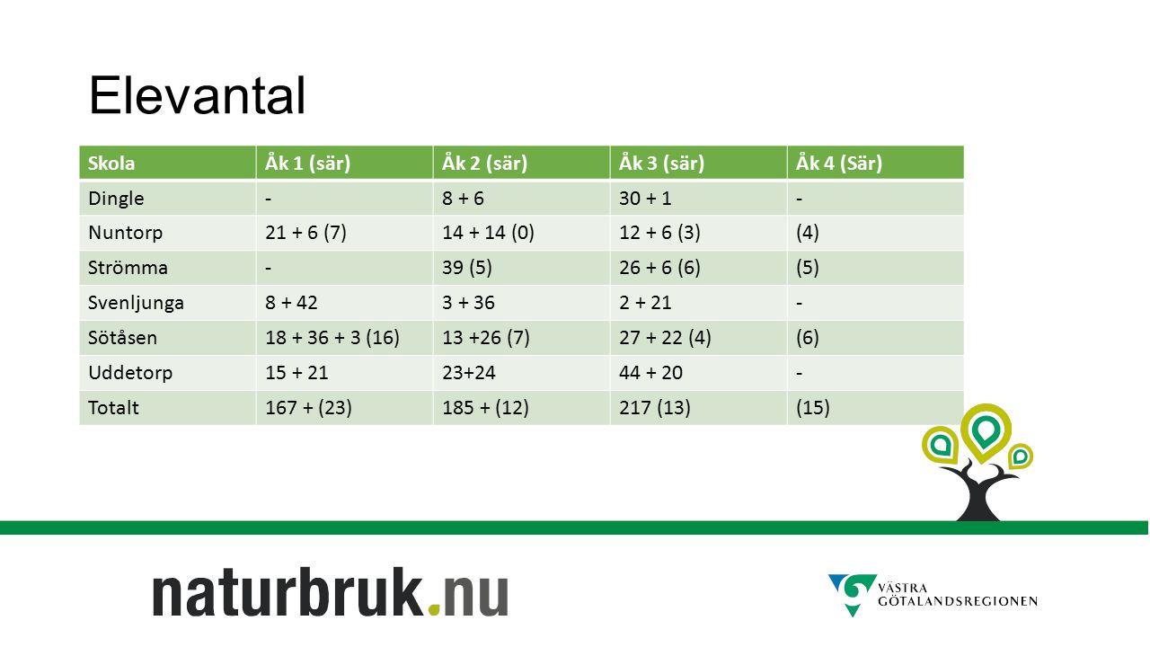 Elevantal SkolaÅk 1 (sär)Åk 2 (sär)Åk 3 (sär)Åk 4 (Sär) Dingle-8 + 630 + 1- Nuntorp21 + 6 (7)14 + 14 (0)12 + 6 (3)(4) Strömma-39 (5)26 + 6 (6)(5) Svenljunga8 + 423 + 362 + 21- Sötåsen18 + 36 + 3 (16)13 +26 (7)27 + 22 (4)(6) Uddetorp15 + 2123+2444 + 20- Totalt167 + (23)185 + (12)217 (13)(15)