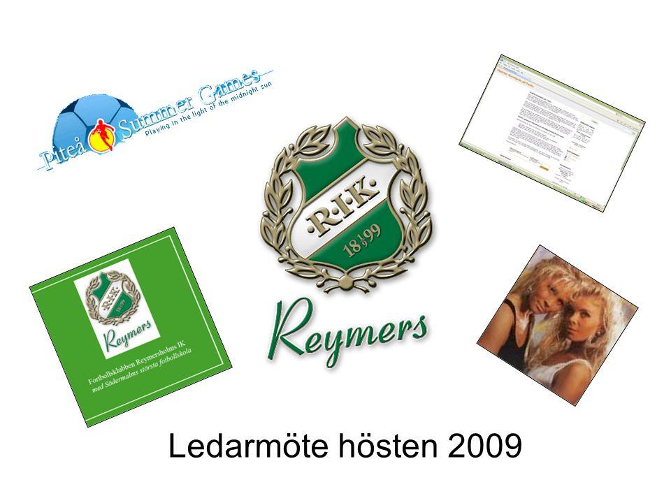 November 200912 Sponsring Sammanställning av potentiella sponsorer Svenska Kyrkan Handelsbanken Lili och Sussi 5.000 kr Vi behöver sponsring.
