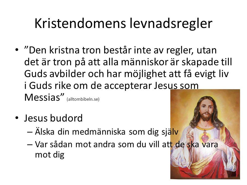 """Kristendomens levnadsregler """"Den kristna tron består inte av regler, utan det är tron på att alla människor är skapade till Guds avbilder och har möjl"""