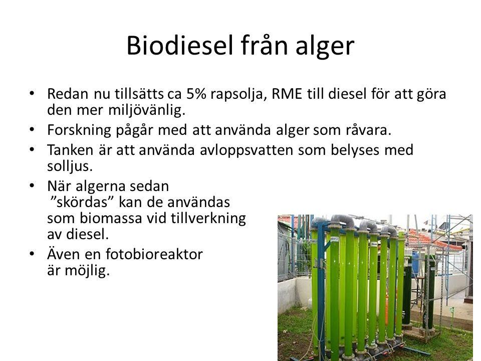 Biodiesel från alger Redan nu tillsätts ca 5% rapsolja, RME till diesel för att göra den mer miljövänlig.