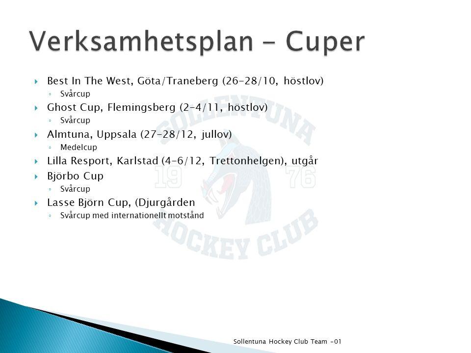  Best In The West, Göta/Traneberg (26-28/10, höstlov) ◦ Svårcup  Ghost Cup, Flemingsberg (2-4/11, höstlov) ◦ Svårcup  Almtuna, Uppsala (27-28/12, jullov) ◦ Medelcup  Lilla Resport, Karlstad (4-6/12, Trettonhelgen), utgår  Björbo Cup ◦ Svårcup  Lasse Björn Cup, (Djurgården ◦ Svårcup med internationellt motstånd Sollentuna Hockey Club Team -01