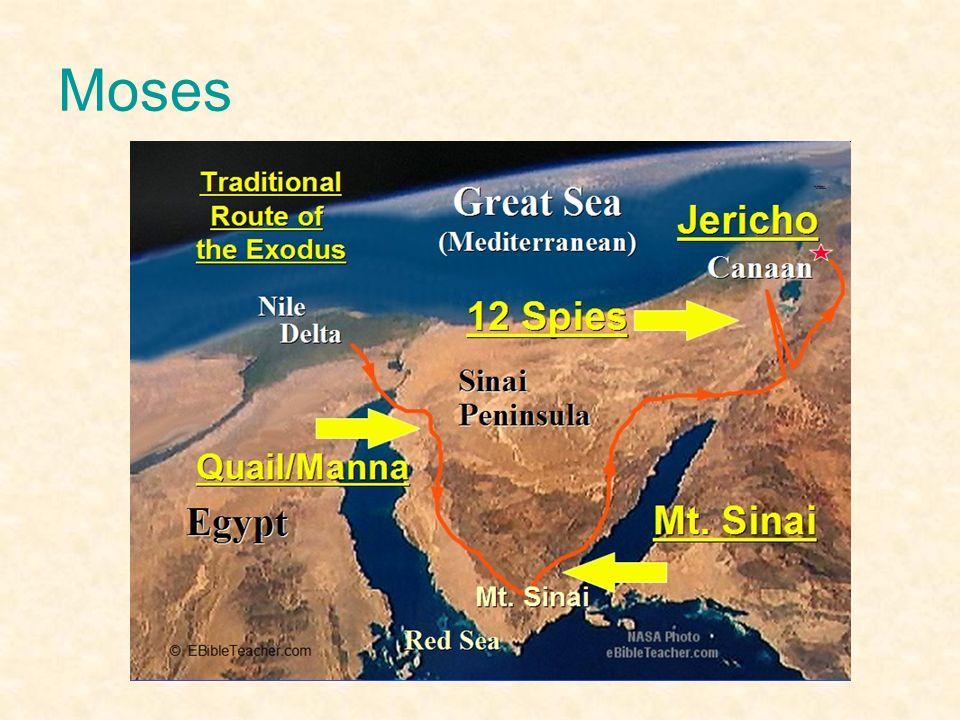 Moses Växer upp hos Farao men vill efter hand flytta från Egypten med sitt egna folk.