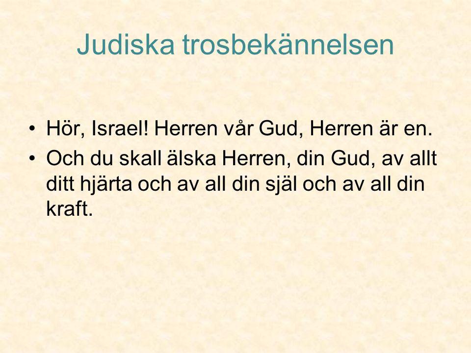 Meningen med livet Om judarna håller fast vid förbundet med Gud, kommer hela världen till slut att bli rättvis fredlig och god.