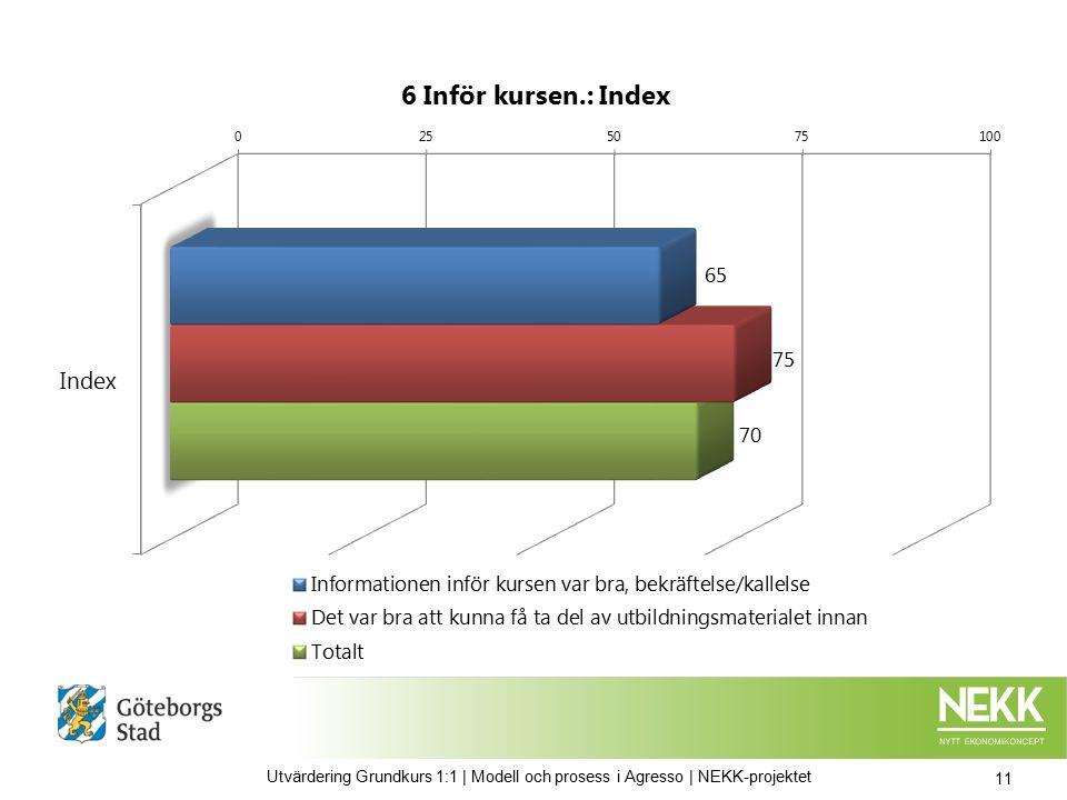 11 Utvärdering Grundkurs 1:1 | Modell och prosess i Agresso | NEKK-projektet