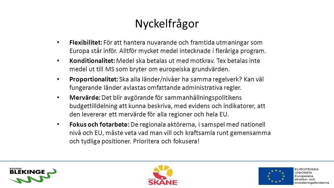 Nyckelfrågor Flexibilitet: För att hantera nuvarande och framtida utmaningar som Europa står inför.