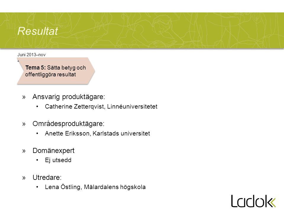 Resultat »Ansvarig produktägare: Catherine Zetterqvist, Linnéuniversitetet »Områdesproduktägare: Anette Eriksson, Karlstads universitet »Domänexpert E