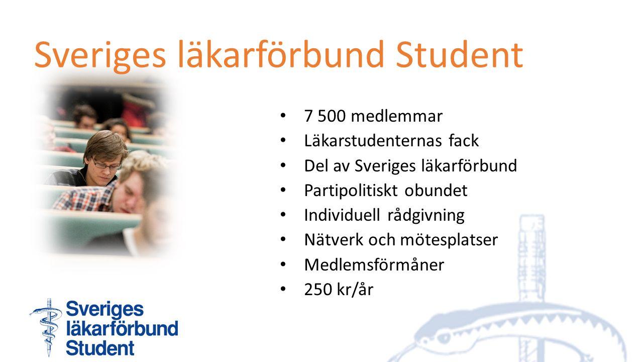 Sveriges läkarförbund Student 7 500 medlemmar Läkarstudenternas fack Del av Sveriges läkarförbund Partipolitiskt obundet Individuell rådgivning Nätverk och mötesplatser Medlemsförmåner 250 kr/år