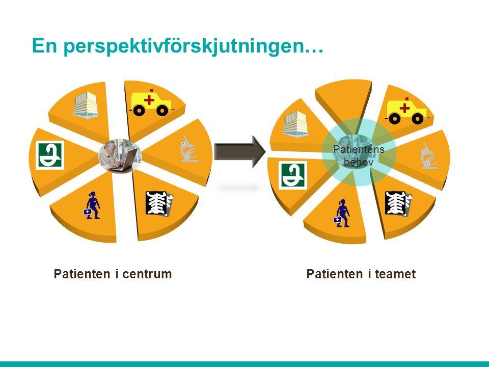 Patienten i centrum Patienten i teamet Patientens behov En perspektivförskjutningen…