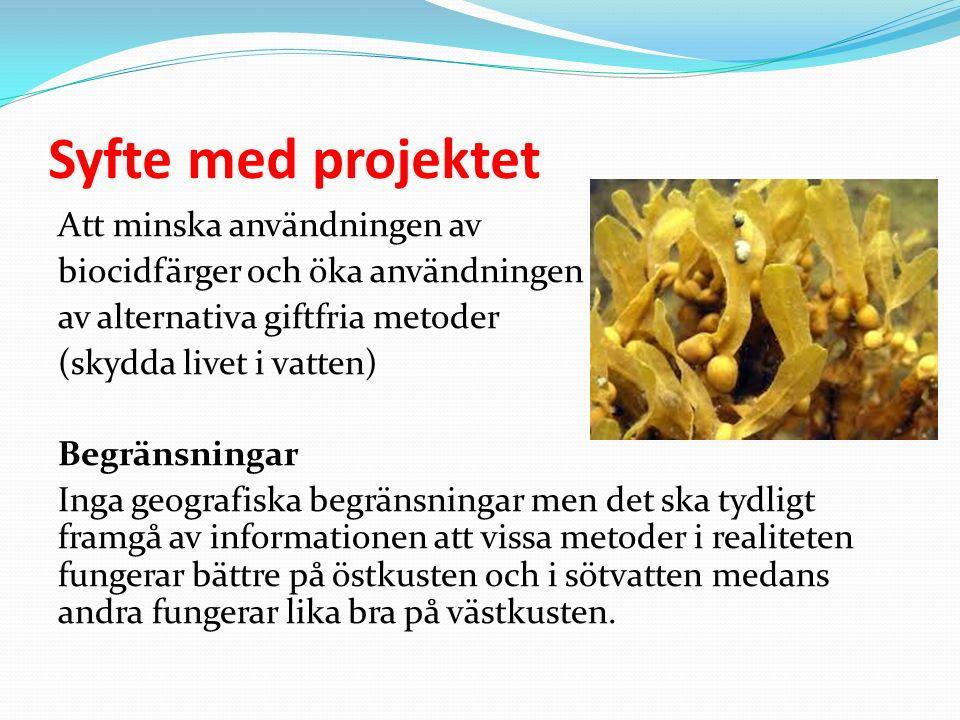 Syfte med projektet Att minska användningen av biocidfärger och öka användningen av alternativa giftfria metoder (skydda livet i vatten) Begränsningar