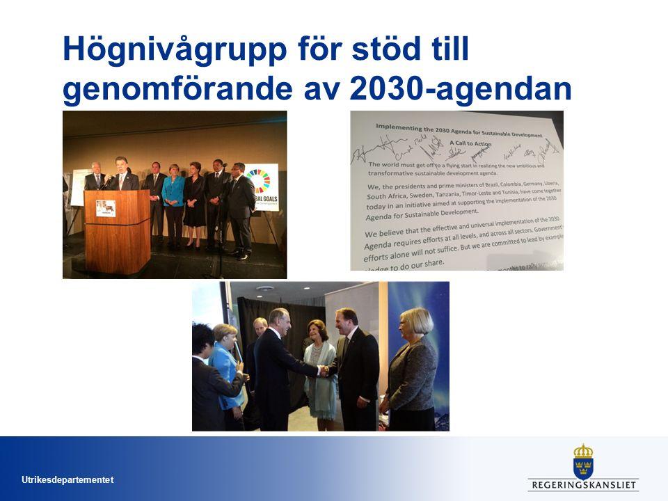 Högnivågrupp för stöd till genomförande av 2030-agendan