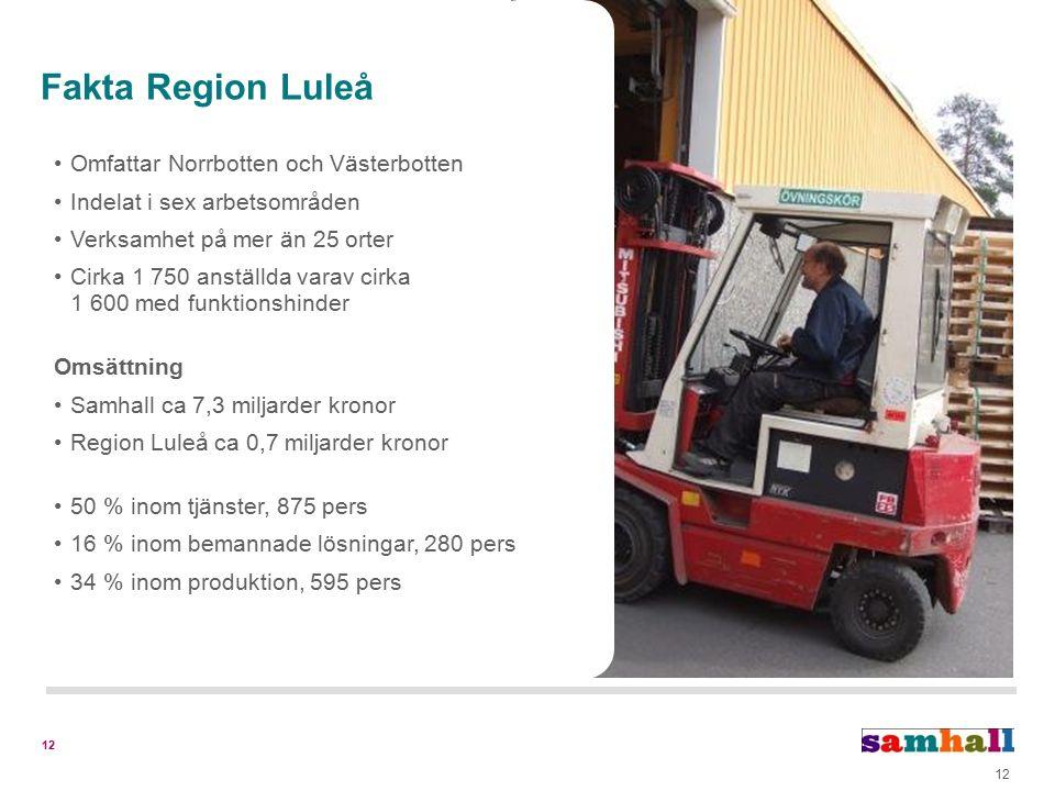 12 Fakta Region Luleå Omfattar Norrbotten och Västerbotten Indelat i sex arbetsområden Verksamhet på mer än 25 orter Cirka 1 750 anställda varav cirka 1 600 med funktionshinder Omsättning Samhall ca 7,3 miljarder kronor Region Luleå ca 0,7 miljarder kronor 50 % inom tjänster, 875 pers 16 % inom bemannade lösningar, 280 pers 34 % inom produktion, 595 pers