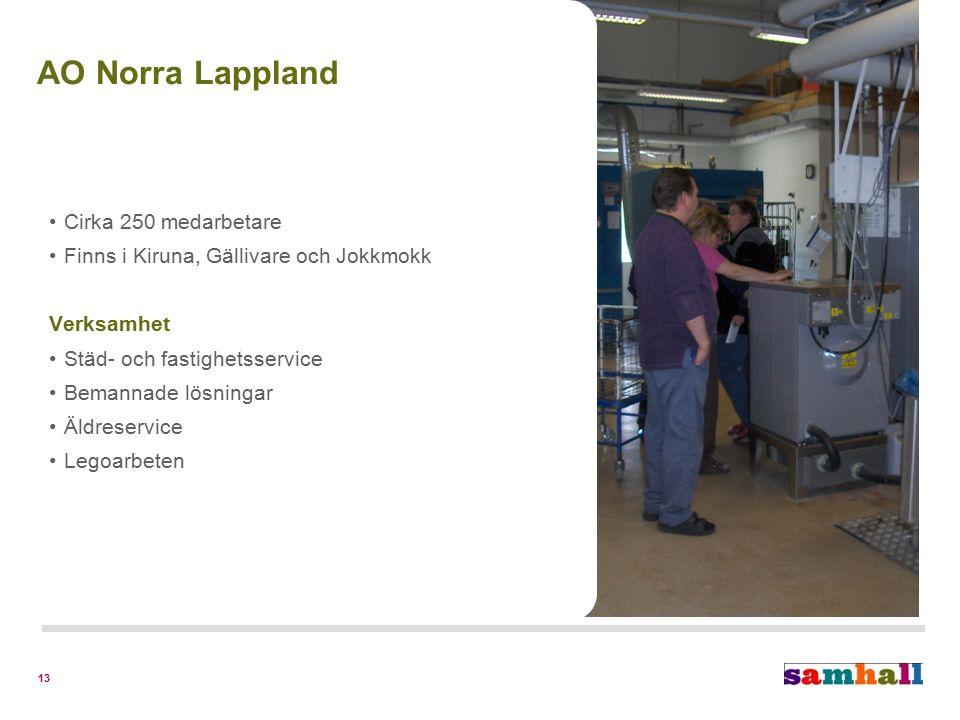 13 Cirka 250 medarbetare Finns i Kiruna, Gällivare och Jokkmokk Verksamhet Städ- och fastighetsservice Bemannade lösningar Äldreservice Legoarbeten AO Norra Lappland