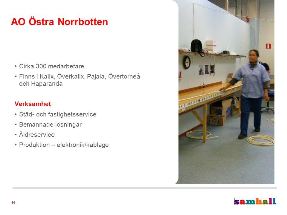 14 Cirka 300 medarbetare Finns i Kalix, Överkalix, Pajala, Övertorneå och Haparanda Verksamhet Städ- och fastighetsservice Bemannade lösningar Äldreservice Produktion – elektronik/kablage AO Östra Norrbotten