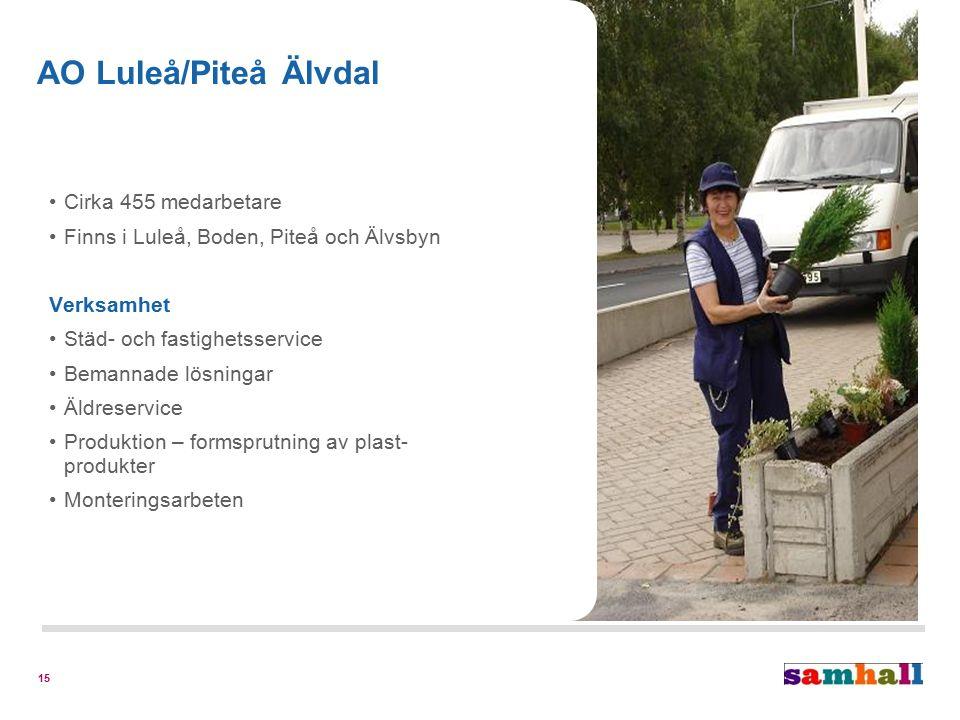 15 Cirka 455 medarbetare Finns i Luleå, Boden, Piteå och Älvsbyn Verksamhet Städ- och fastighetsservice Bemannade lösningar Äldreservice Produktion – formsprutning av plast- produkter Monteringsarbeten AO Luleå/Piteå Älvdal