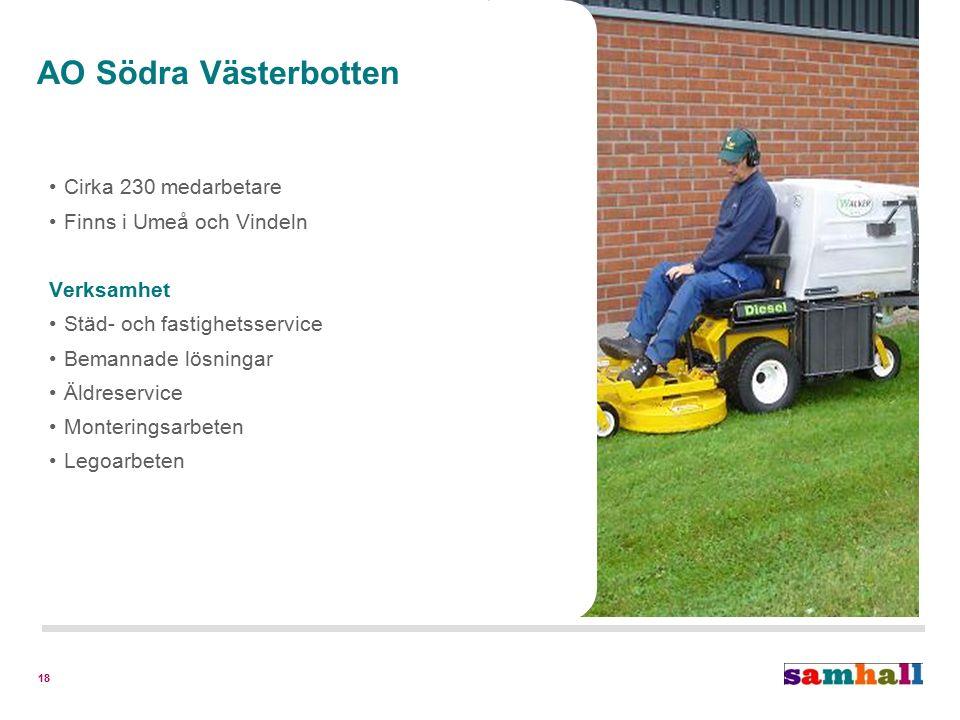 18 Cirka 230 medarbetare Finns i Umeå och Vindeln Verksamhet Städ- och fastighetsservice Bemannade lösningar Äldreservice Monteringsarbeten Legoarbeten AO Södra Västerbotten