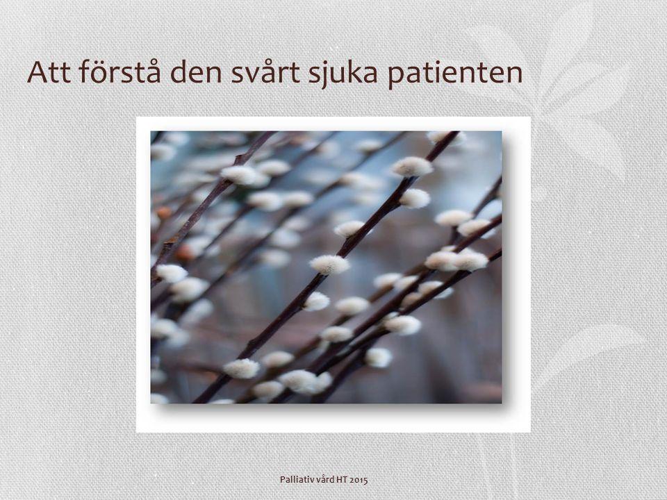 Palliativ vård HT 2015 Att förstå den svårt sjuka patienten