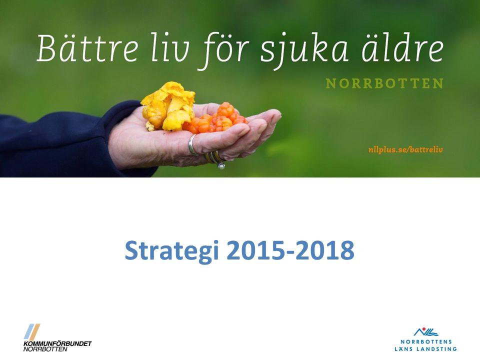Innehåll på rubriknivå Bakgrund Äldre befolkning i Norrbotten Målgrupp för satsningen Vision Syfte Mål Inriktningsområden Uppföljning och analys