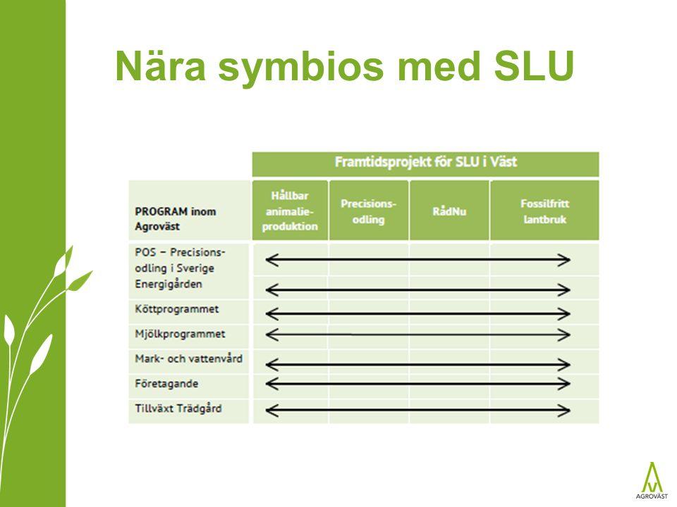 Nära symbios med SLU