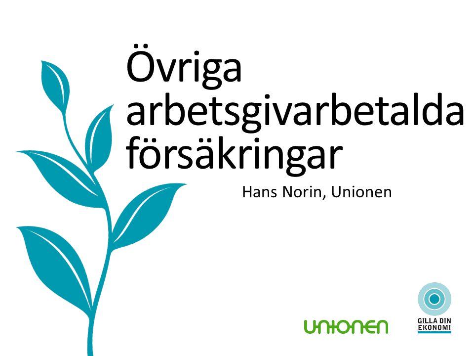Övriga arbetsgivarbetalda försäkringar Hans Norin, Unionen