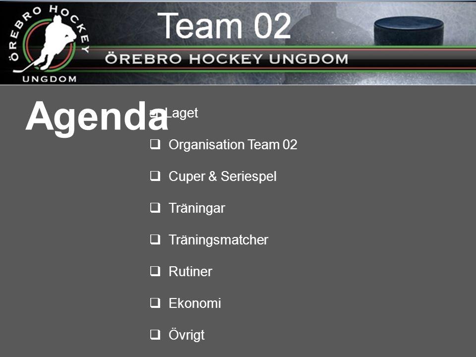 Agenda  Laget  Organisation Team 02  Cuper & Seriespel  Träningar  Träningsmatcher  Rutiner  Ekonomi  Övrigt