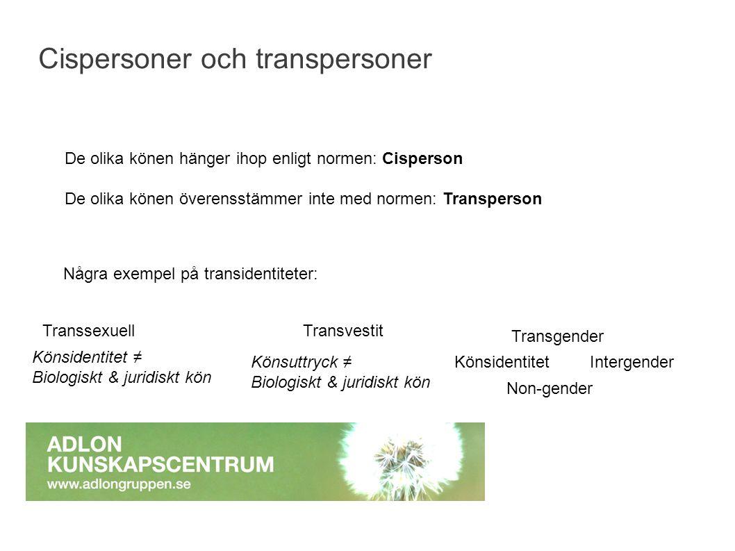 Cispersoner och transpersoner De olika könen hänger ihop enligt normen: Cisperson De olika könen överensstämmer inte med normen: Transperson Några exe
