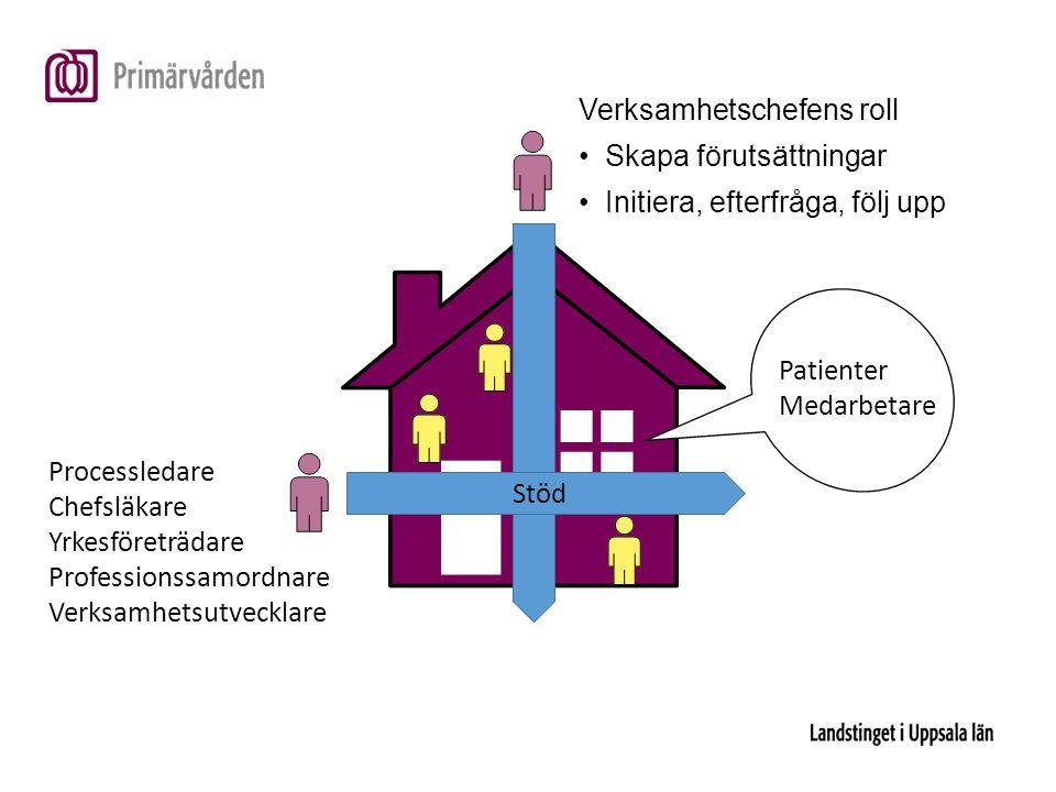 Stöd Verksamhetschefens roll Skapa förutsättningar Initiera, efterfråga, följ upp Processledare Chefsläkare Yrkesföreträdare Professionssamordnare Verksamhetsutvecklare Patienter Medarbetare