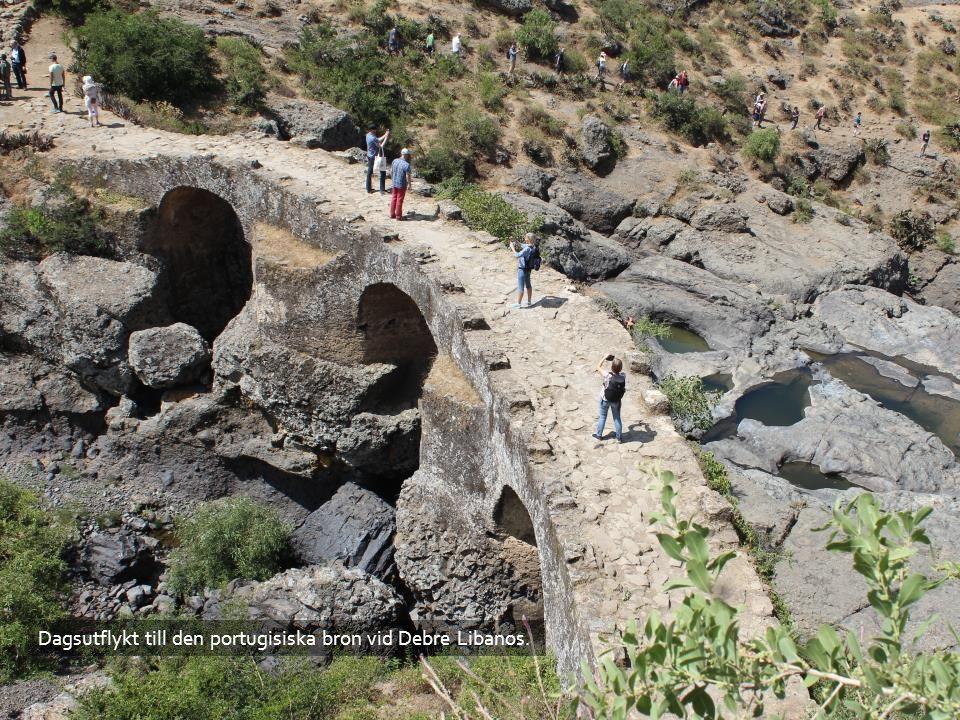 Dagsutflykt till den portugisiska bron vid Debre Libanos.