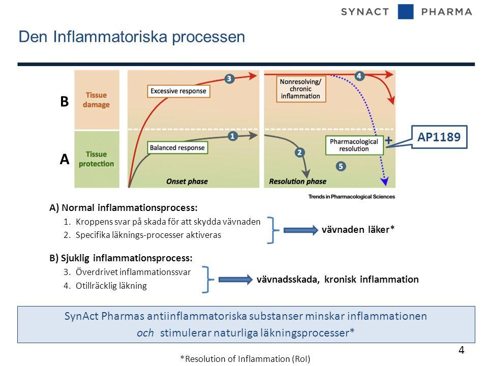Den Inflammatoriska processen 4 A) Normal inflammationsprocess: 1.Kroppens svar på skada för att skydda vävnaden 2.Specifika läknings-processer aktiveras B) Sjuklig inflammationsprocess: 3.Överdrivet inflammationssvar 4.Otillräcklig läkning A B vävnadsskada, kronisk inflammation vävnaden läker* SynAct Pharmas antiinflammatoriska substanser minskar inflammationen och stimulerar naturliga läkningsprocesser* AP1189 + *Resolution of Inflammation (RoI)